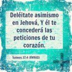 Citas de la Biblia con Promesas de Salvación Eterna
