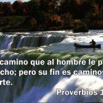 Proverbios de la Biblia, Sabiduría, Conocimiento y Verdad