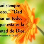Versículos de Agradecimiento a Dios por sus Bendiciones