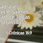Versículos de las maravillas de Dios para su Honra y su Gloria