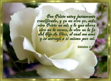 textos biblicos de bendicion cristo