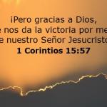 El Sacrificio de Jesús fue el precio de la Salvación