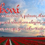 El Amor de Jesús es Infinito, Verdadero y Maravilloso
