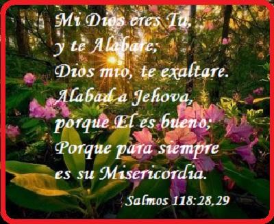 Adorar a Dios Jehova