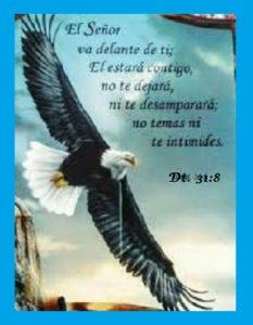 las promesas de Dios contigo