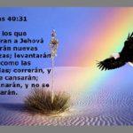 Mensajes Verdaderos para Depositar toda la Confianza en Dios