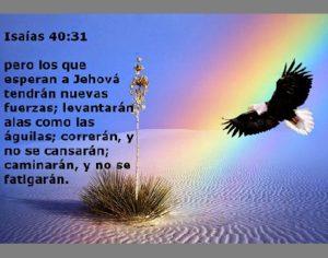Confianza en Dios Esperanza