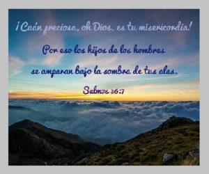 Confianza en Dios Misericordia