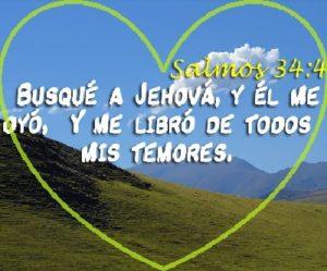 Mensajes de Vida Jehova