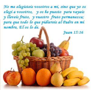 Caminar con Dios Fruto