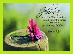 Grandeza de Dios Jehova
