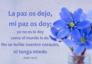 Paz de Dios Corazon