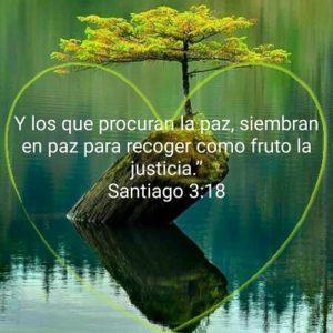 Paz de Dios Justicia