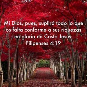 buscar el Reino de Dios gloria