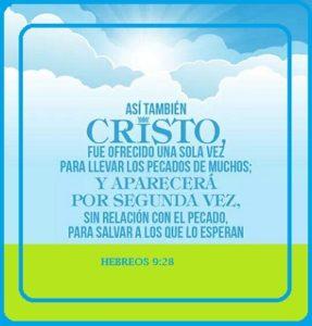 Jesucristo la Vid Verdadera Salvación