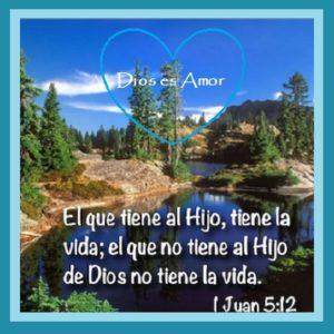 Jesucristo la Vid Verdadera vida