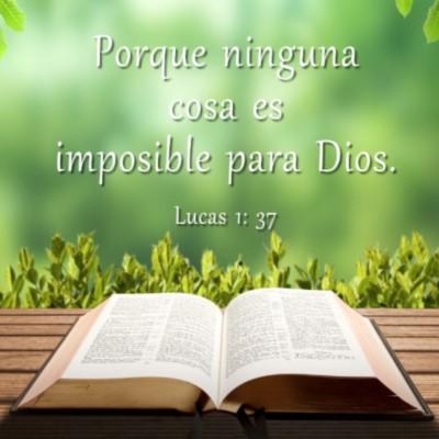 palabras bíblicas de amor Dios