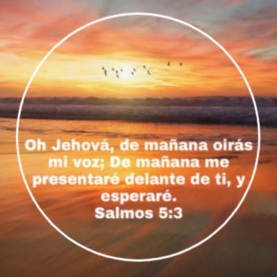 palabras bíblicas de amor fortaleza