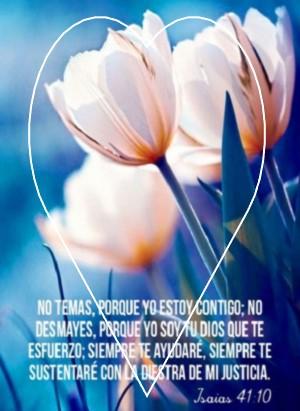 palabras biblicas de amor verdad