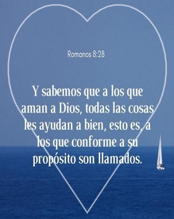 El amor de Jesus proposito